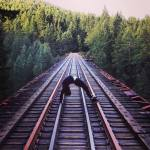 Wheel on the trestle in Goldstream Park, Victoria BC. yoga