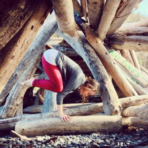 Crow in the driftwood fort. Yoga victoria BC