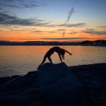 Wild thing at sunset with the Breakwater in the background, Victoria BC. Katie Thacker Domestikatie